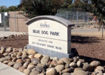 bear dog park sign